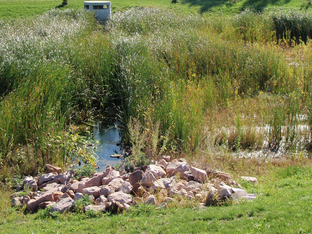 Enviroscapes Solutions, LLC offers Stormwater Pond Consulting and Inspections